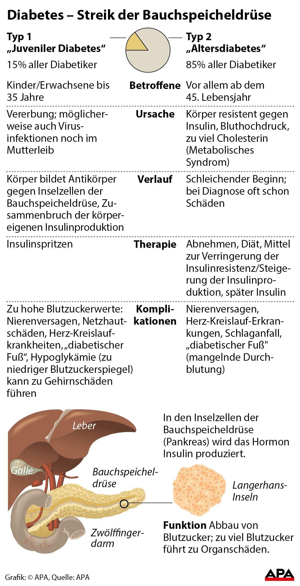 Schön Funktion Der Bauchspeicheldrüse Zeitgenössisch - Menschliche ...