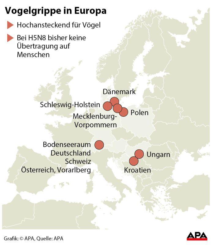 Vogelgrippe österreich