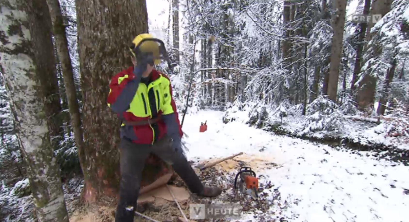 """Vorarlberg: """"Holz von hier"""" - Strategien für regionales Holz"""