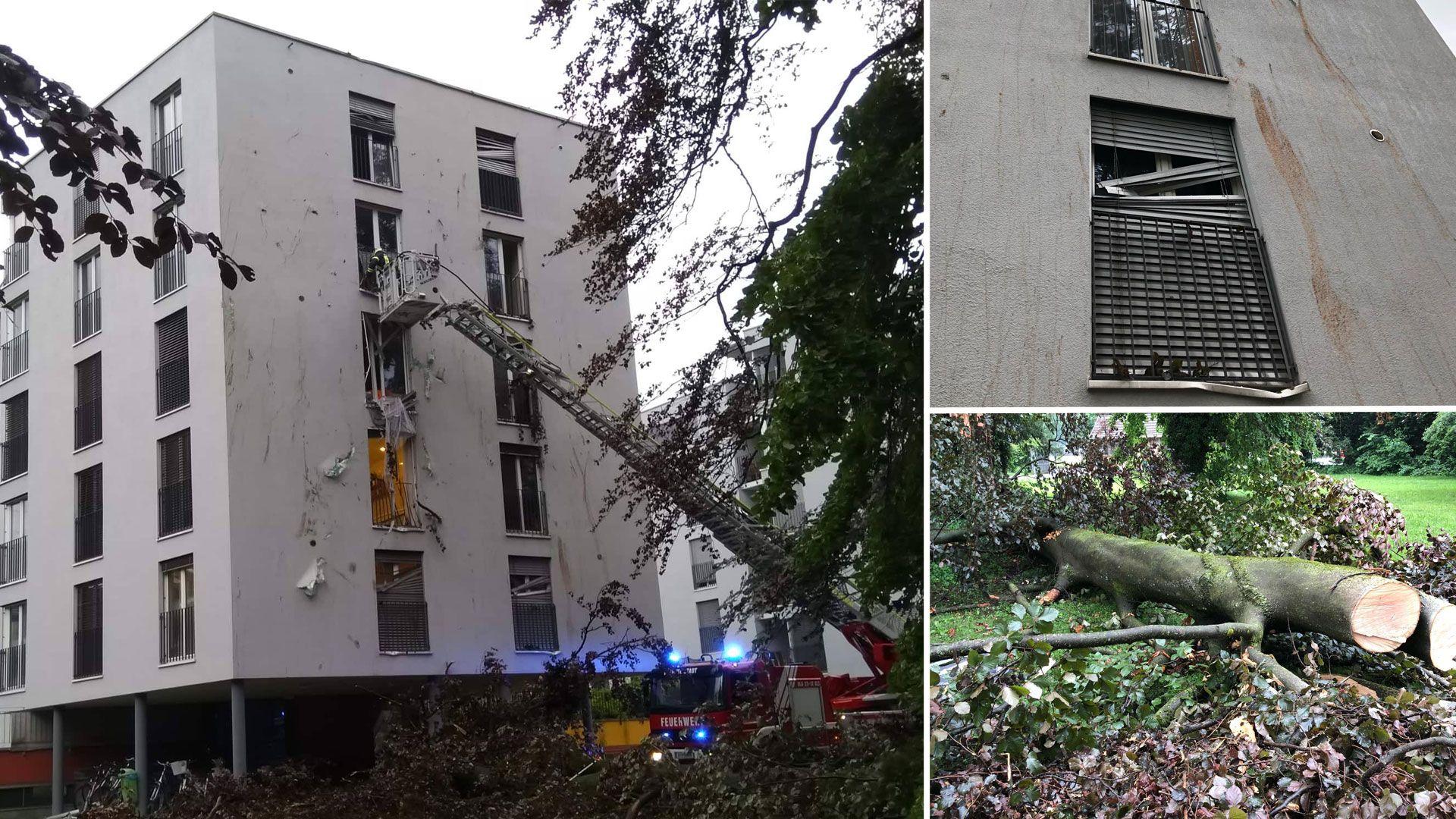 Vorarlberg: Baum stürzt auf Bregenzer Haus