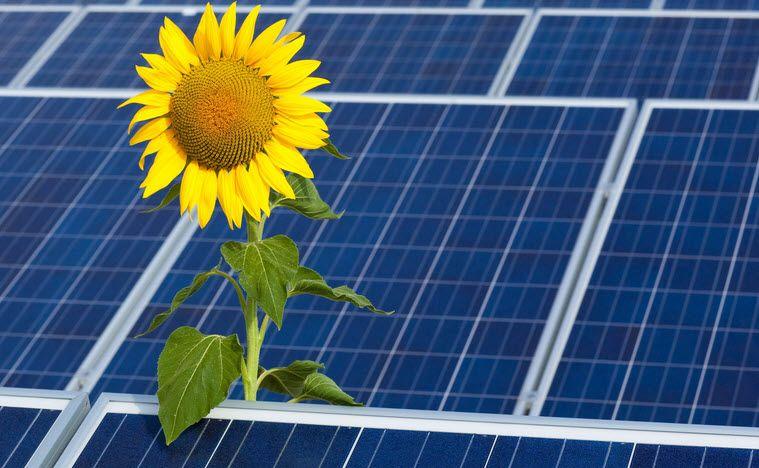 Land Vorarlberg fördert 100 Stromspeicher für Photovoltaikanlagen