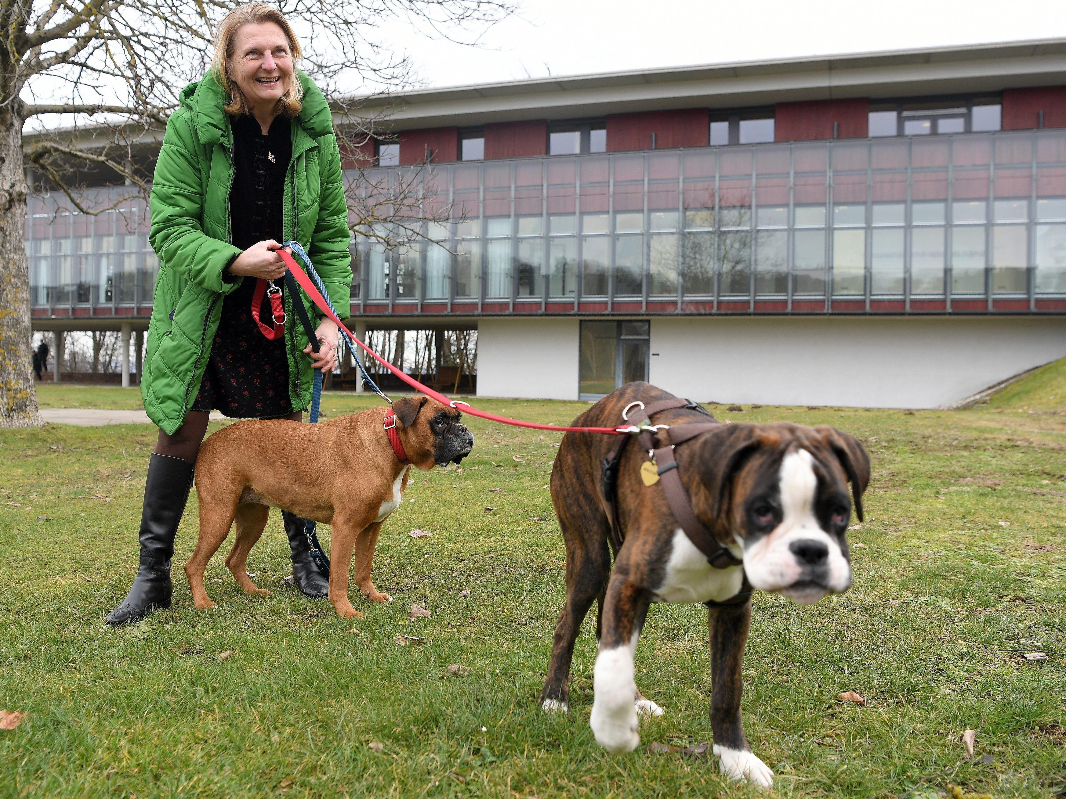Partnersuche hundehalter