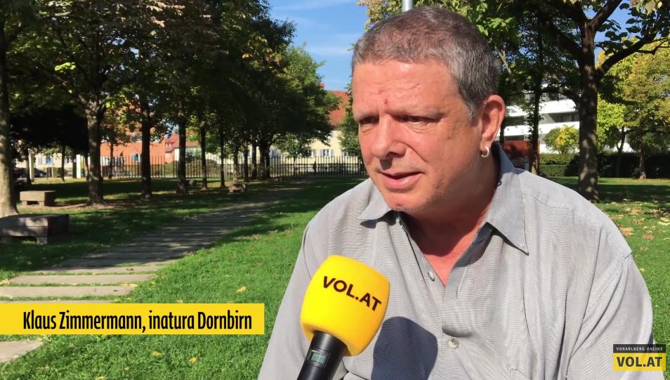Pilzsaison in Vorarlberg: Speisepilze und gefährliche Doppelgänger