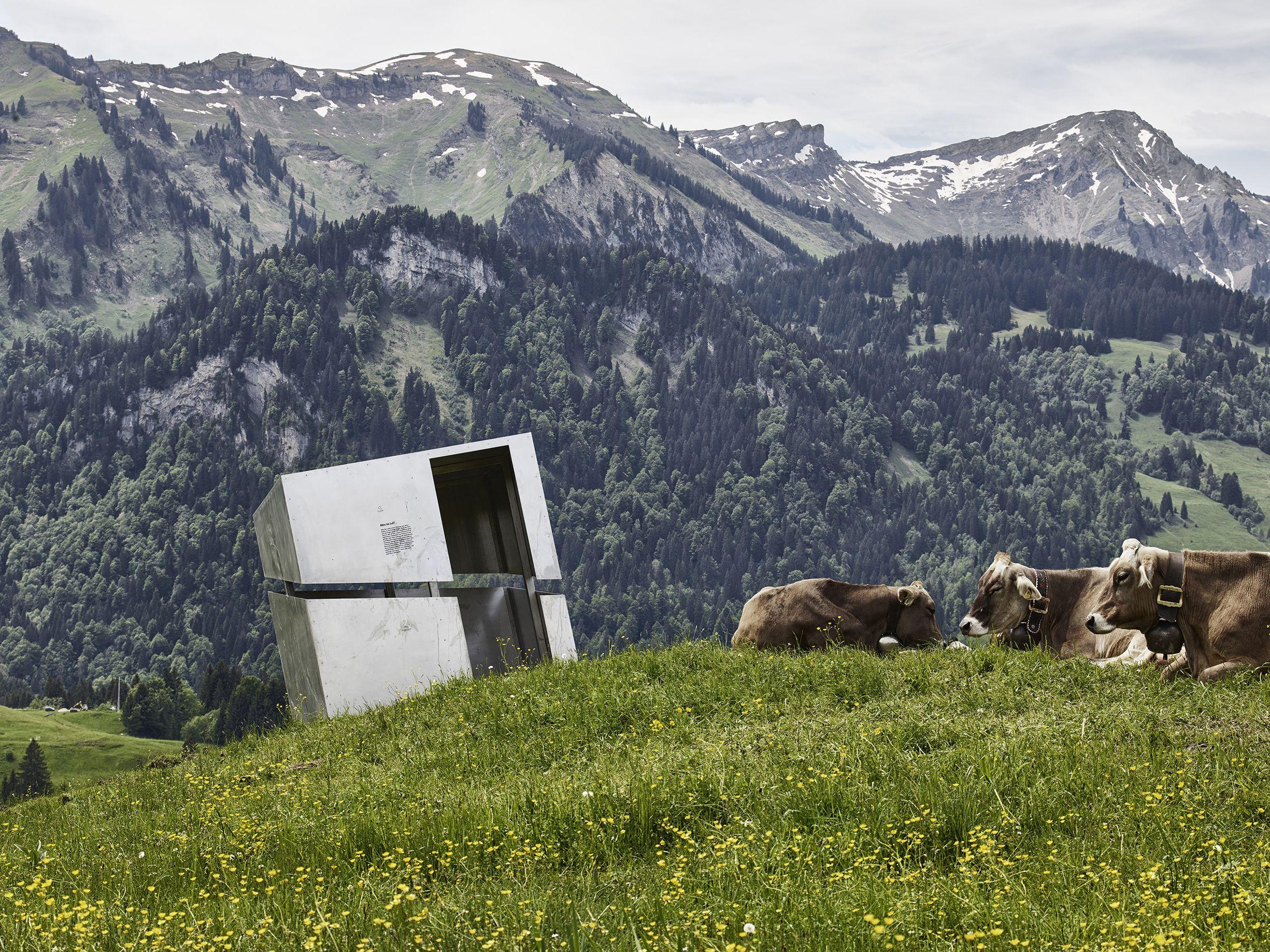 Zwei Bauherrenpreise gehen nach Vorarlberg