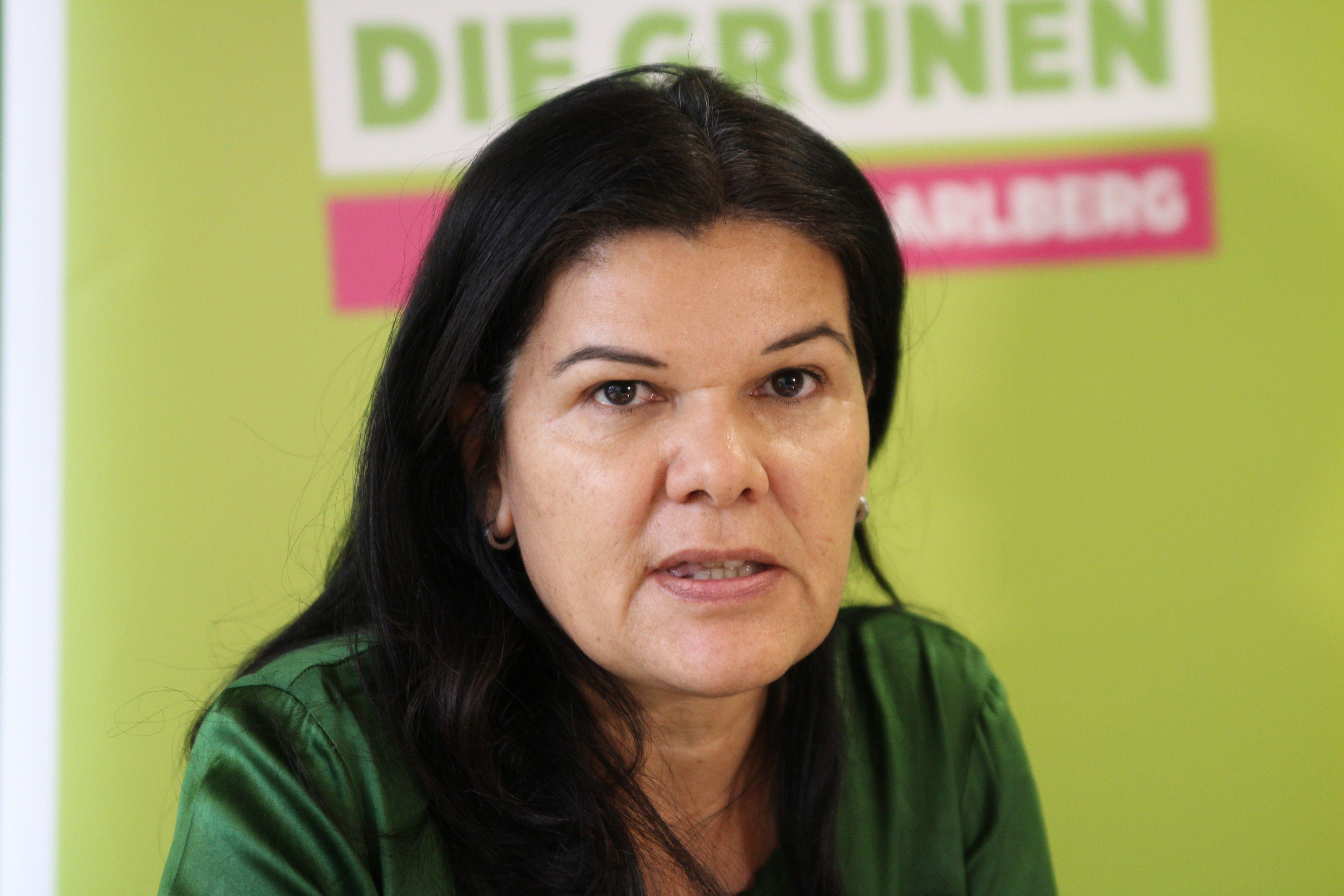 IfS-Kontrollausschuss: Regierung wehrt sich gegen FPÖ-Angriff