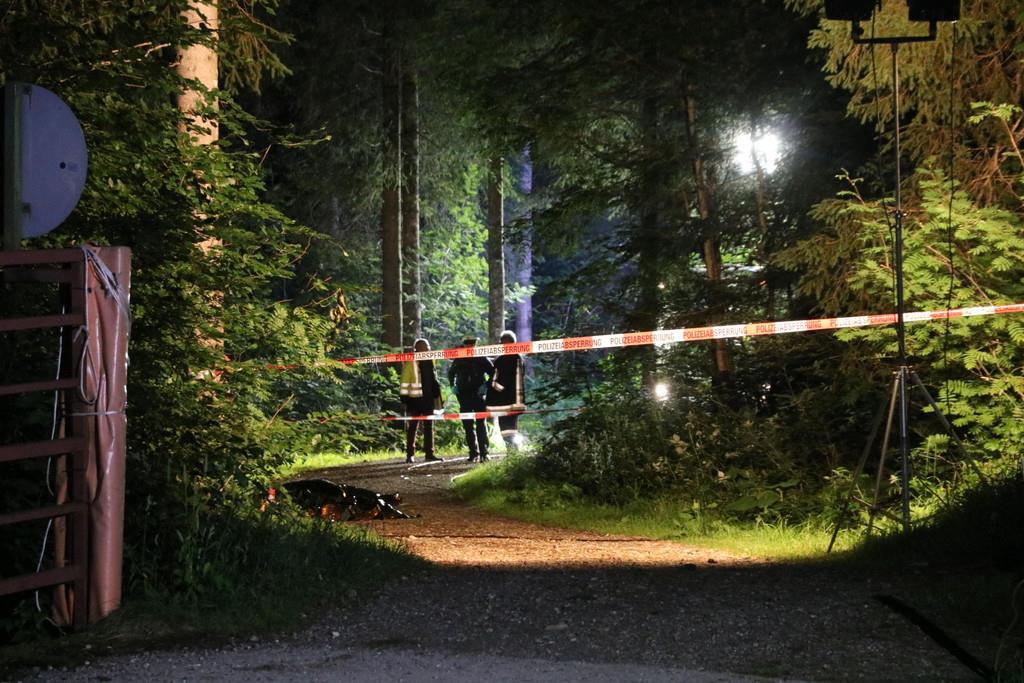 Traktorunfall im Allgäu - Polizei prüft Inhaberschaft von Waldweg