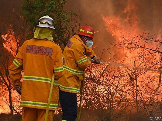 Buschfeuer in Australien: Höchste Warnstufe für Sydney