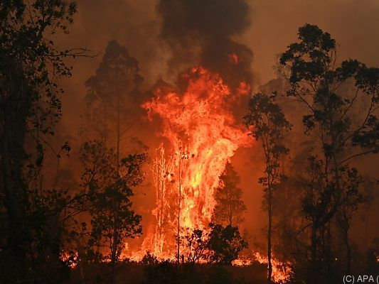 Buschfeuer in Australien geraten immer mehr außer Kontrolle