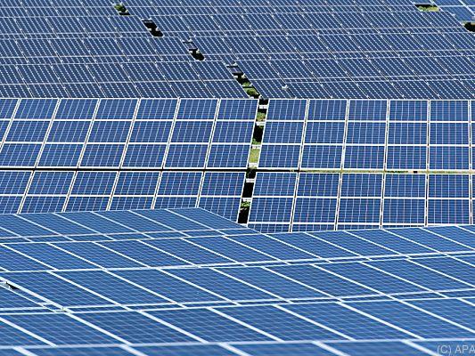 Klimafonds-mit-Rekord-F-rderbudget-von-236-Mio-Euro