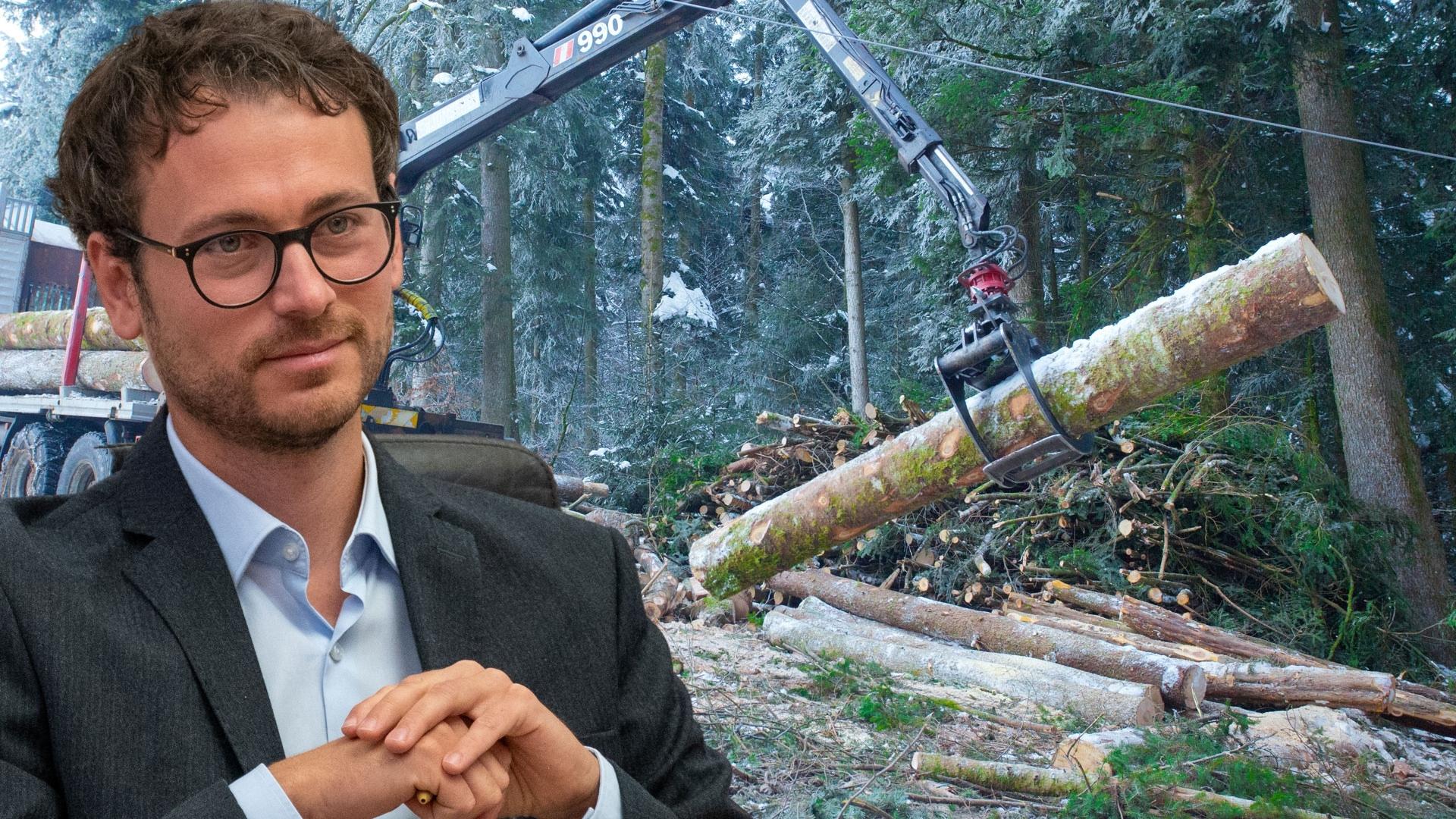 """""""Den Wald vor lauter Preistreiberei nicht sehen"""""""