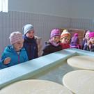 Beim Besuch in der Sennerei staunten die Kinder über die schwimmenden Käselaibe. - Beim Besuch in der Sennerei staunten die Kinder über die schwimmenden Käselaibe.